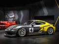Porsche-Cayman-GT4-(7)